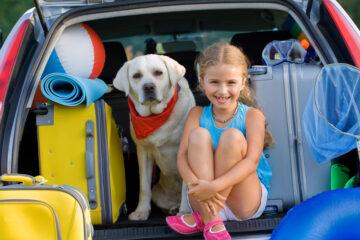 Auswanderung mit Hund und Katze